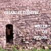 dentel_small